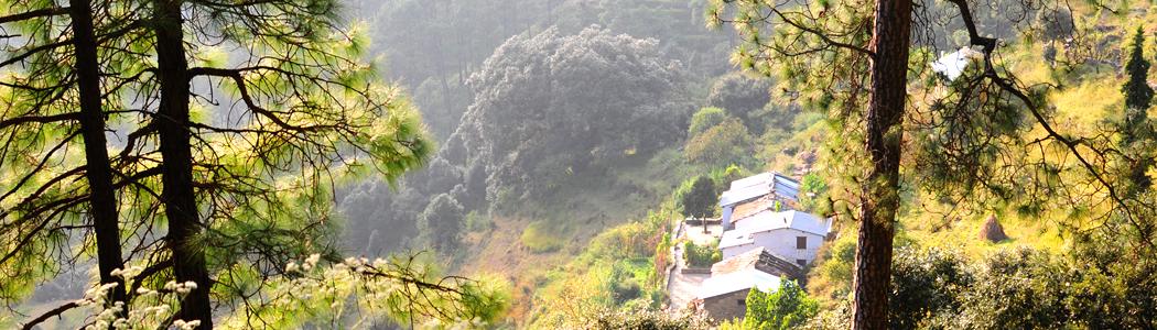 The Binsar Hills