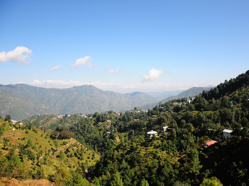 Blushes Of Kumaon