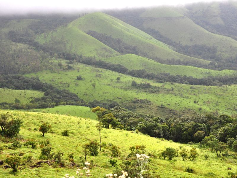 The Spice Valley, Coorg