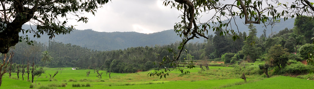 Picturesque Coorg