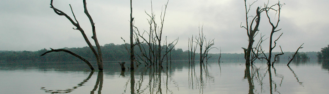 The Kabini River