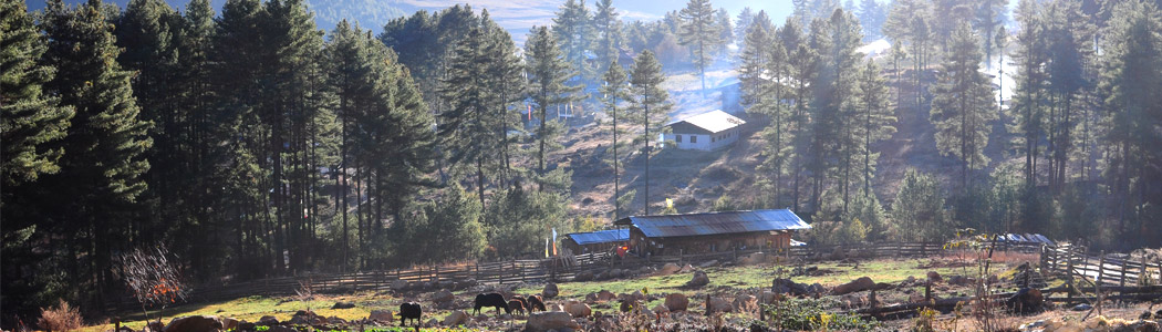 Bumthang - Rustic Beauty