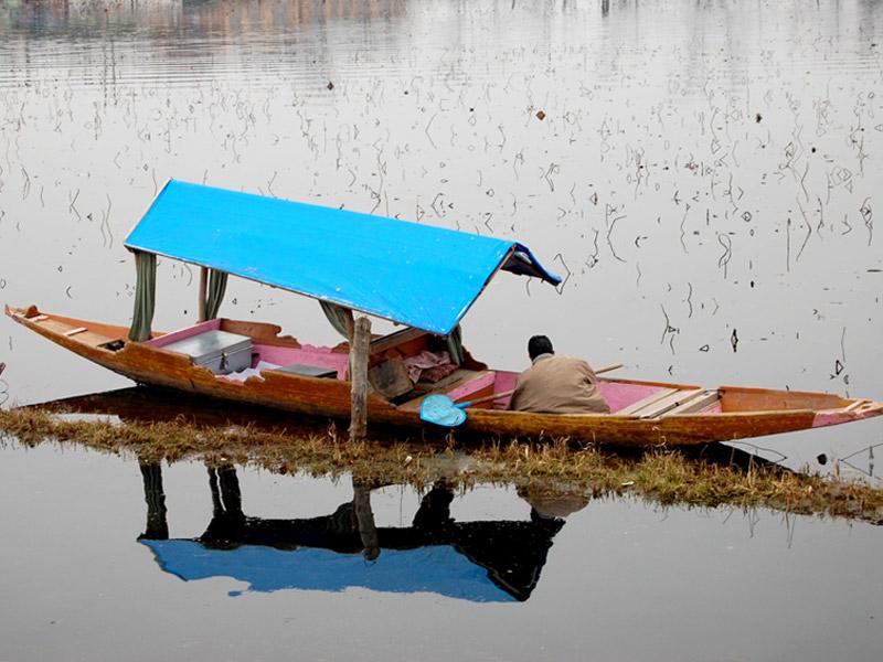 Shikara On Dal Lake, Srinagar