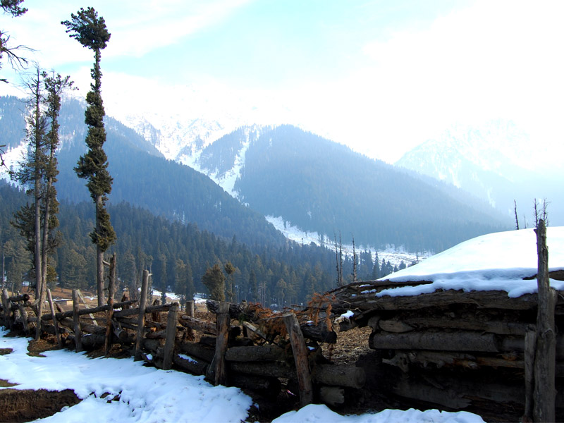 "The ""Valley of Shepheds""- Pahalgam"