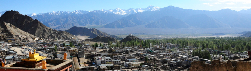 Leh Town and Surrounding Hills